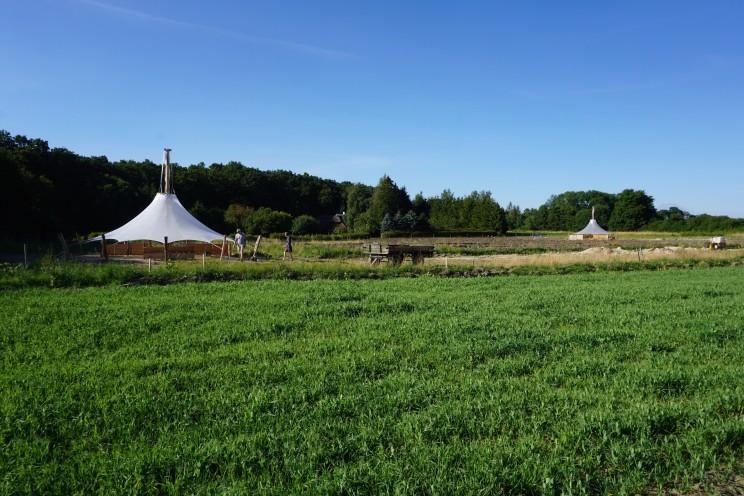 græsningsfolde og telte